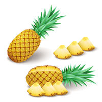 Bright realistic pineapple with slices, pieces isolated on white