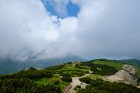 Summer misty morning cloudy Carpathian Mountains (Chornohora range, Ukraine)