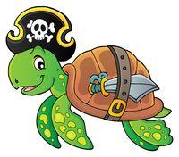 Pirate turtle theme image 1