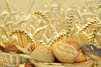 Getreide 124.jpg