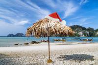 Beach Tropical Christmas