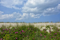 Warnemuende Strand Ostsee