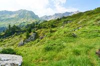 Natur Landschaft in den französischen Alpen