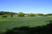 Blick über das Heckengäu bei Weissach