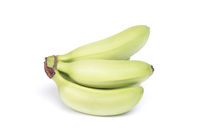 Small tropical banana cluster