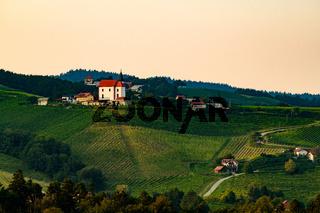 Vineyards with small village in Ritoznoj, Slovenia