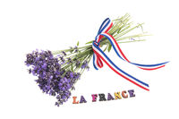 Lavender from France