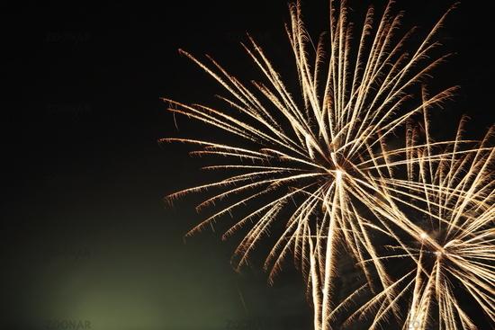 Firework flower in front of black background