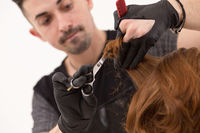 Close-up of barber trimming hair with scissors and comb
