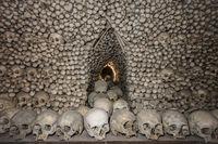 Human skulls and bones. Gothic vault. mass grave. Texture. Kostnice in Kutna Hora, Czech republic