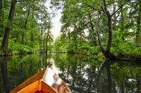 landscape in the Spreewald in Brandenburg in Germany