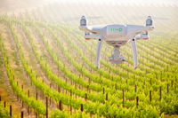 Unmanned Aircraft System (UAV) Quadcopter Drone In The Air Over Grape Vineyard Farm