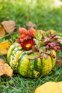 Little pumpkin with flower