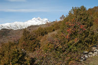 Peaks of the Ordesa and Monte Perdido National Park from Bestue (from left to right: Monte Perdido