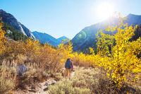 Hike in autumn season