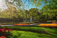 Keukenhof flower garden. Lisse, the Netherlands.