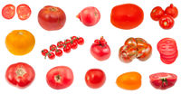 various fresh tomatoes isolated on white