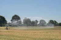 Bewässerung... Hochsommer *Nordrhein-Westfalen*, Regnerwagen wässert ein Getreidefeld