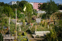 Urban Gardening at Tempelhofer Feld (Flughafen Tempelhof) in Berlin