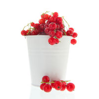 Red currents in white bucket