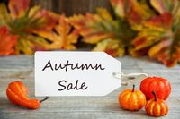 Label With Text Autumn Sale, Pumpkin And Leaves