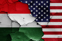 flags of Hungary and USA painted on cracked wall