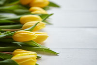Composition of fresh tulips placed in row on white rustic wooden table