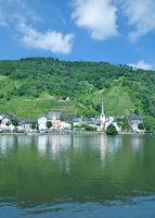 Weinort Alf  an der Mosel,Rheinland-Pfalz,Deutschland