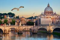 Birds and Vatican