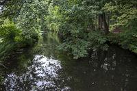 Fluss Dinkel bei Legden