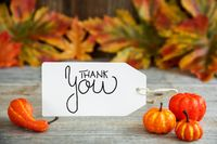 Label With Calligraphy Thank You, Pumpkin And Leaves