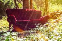 Rotes Sofa im Wald
