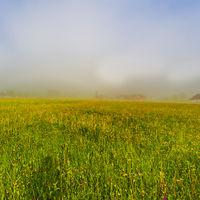Mist over Austrian landscape