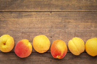 fresh ripe apricots on a rustic wood