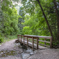 Wooden bridge on top of rocky stream with foliage