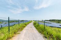 solar power plant on hillside
