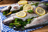 fresh trout with lemon and different herbs