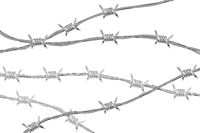 Several lines of glossy realistic barbed wire isolated on white