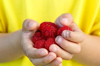 Himbeeren Früchte Beeren Himbeere Frucht Beere Sommer halten Hände Kind kleiner Junge