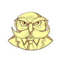 Angry Owl Man Mustache Doodle Color