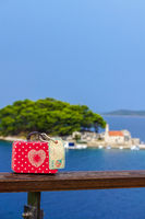 Red suitcase on travel-12.jpg