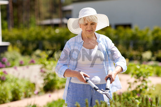 senior gardener with hedge trimmer at garden