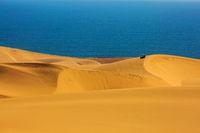 Atlantic sand dunes
