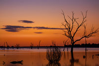 Silhouettes on the lake outback sunset