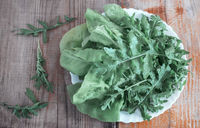 Fresh green leaves of arugula on the table