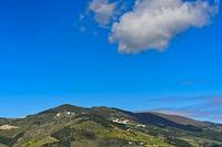 Hügellandschaft mit Weinfeldern in der Alto Douro Region, Pinhao, Douro Tal, Portugal