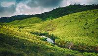 The Horton Plains. Beautiful landscape. Sri lanka panorama