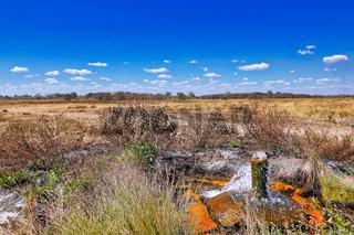Heisse Quelle im South Luangwa Nationalpark, Nsefu-Sektor, Sambia   Hot Springs at South Luangwa National Park, Zambia