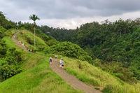 Tourists walking on the Campuhan Ridge Walk in Ubud, Bali, Indonesia