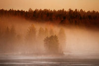 Spring evening on a forest lake with fog